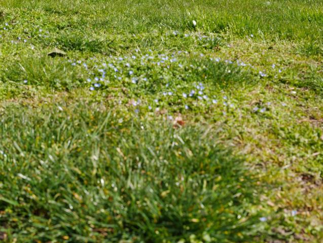 Annonces immobilier vendre en suisse terrain martigny for Micasa martigny