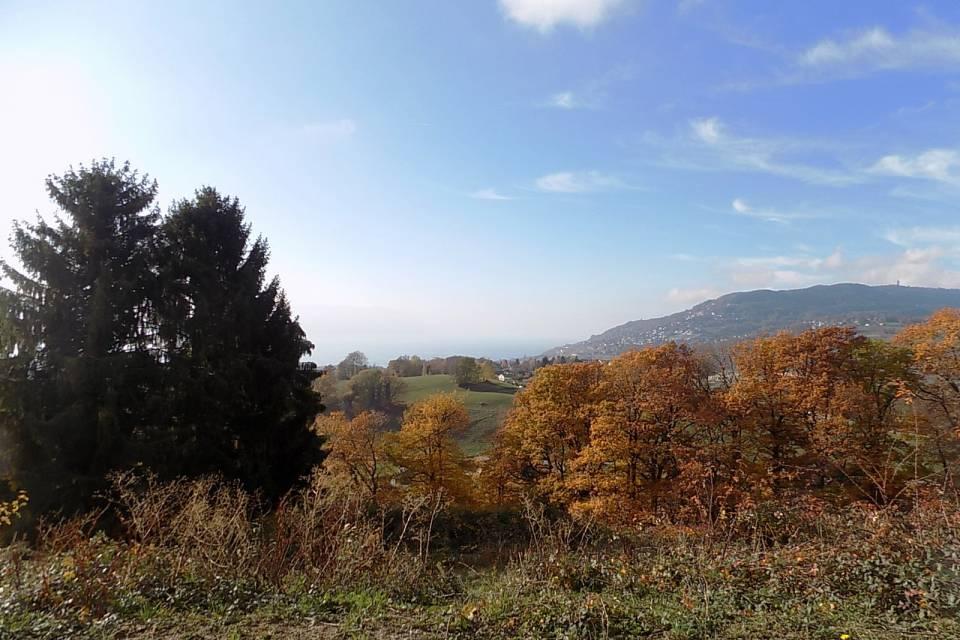 Terrain à St-Légier-La Chiésaz