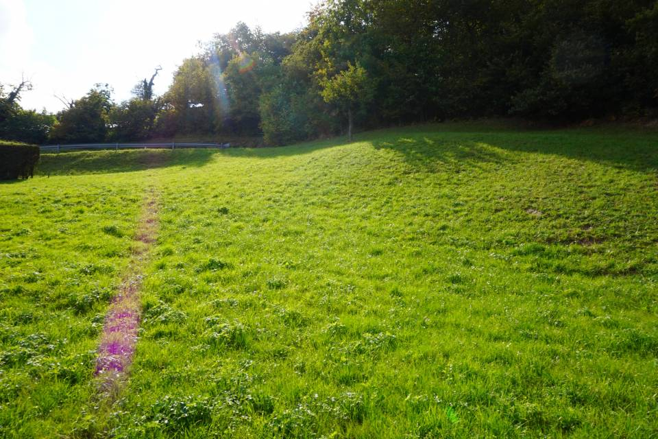 Terrain à Collombey