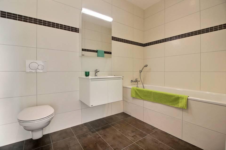 Témoin C.5.-5 WC-bains