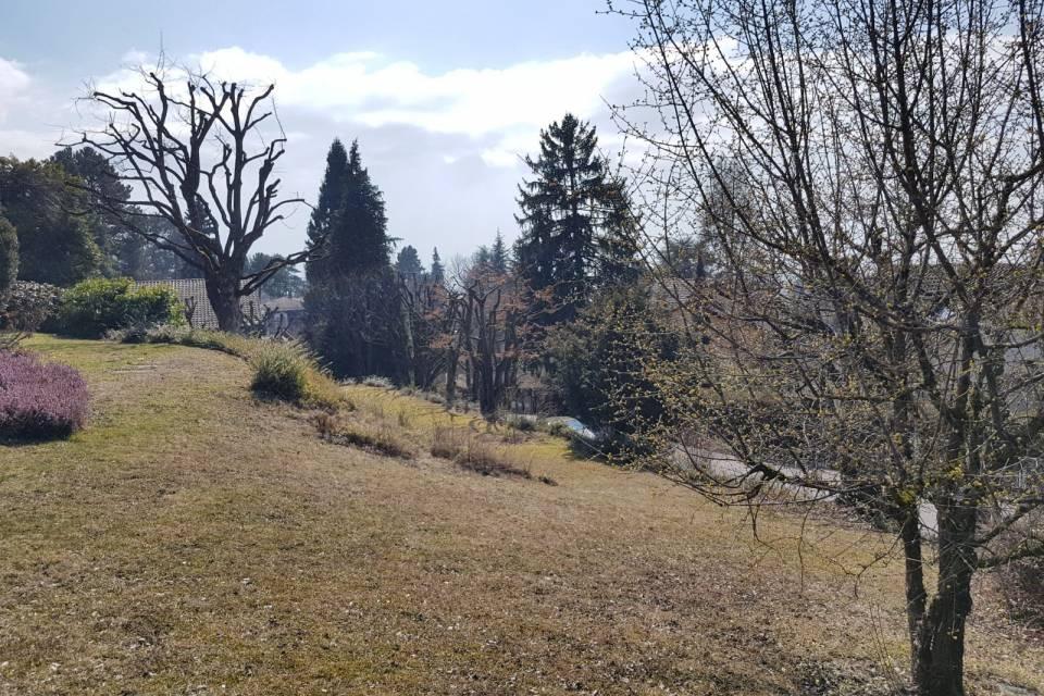 Terrain à Lausanne