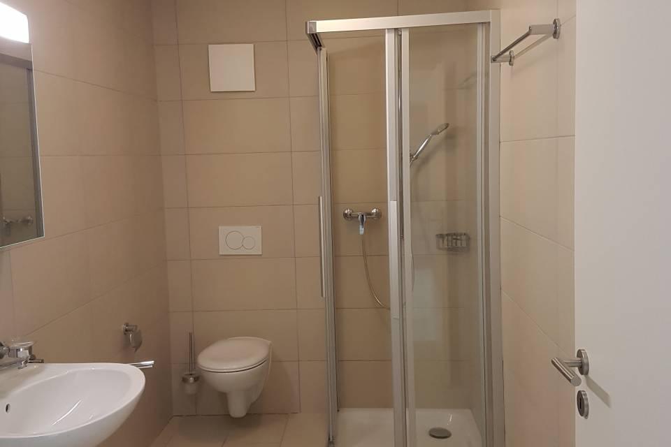Salle-de-douche avec emplacement pour colonne de lavage