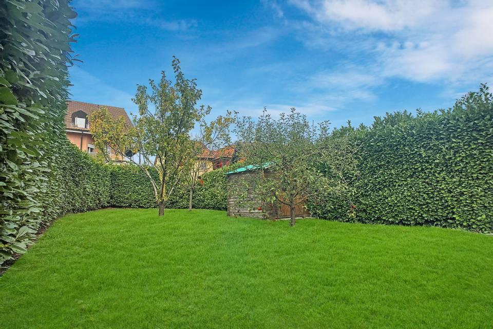 Le jardin privatif de 150m2, son cabanon et ses arbres fruitiers