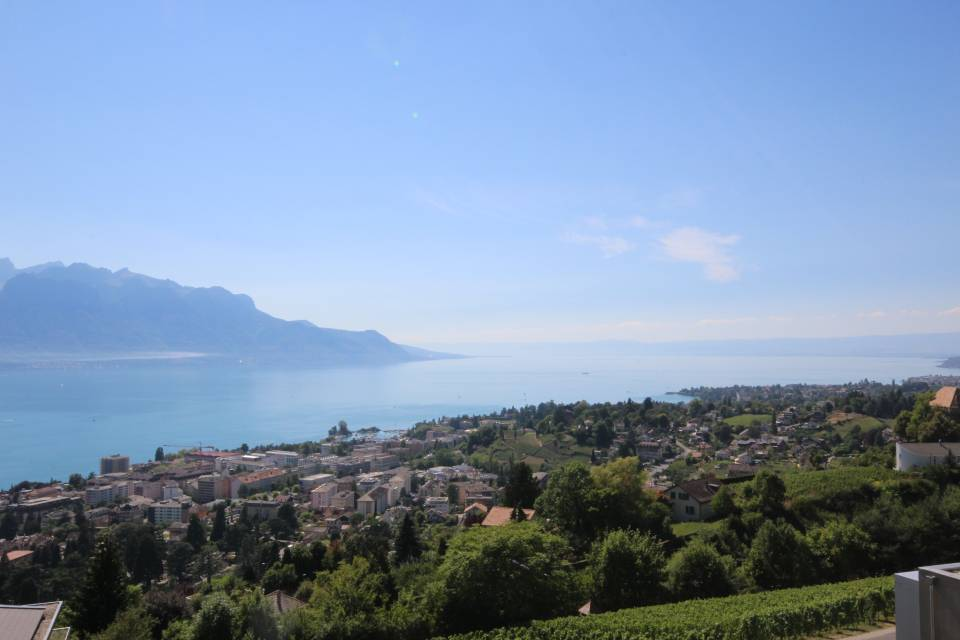 Montreux - Chernex / Apartment of 6.5 rooms