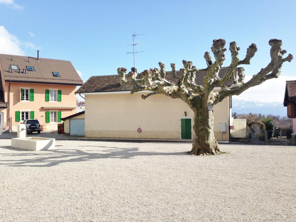 Flat 4 rooms in Mont-sur-Lausanne