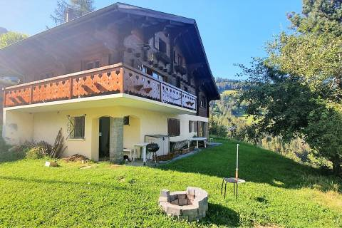 Chalet and garden view