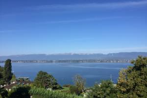 Splendid lake view