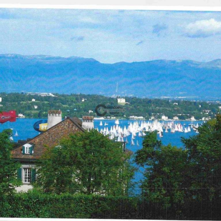 Swiss Luxury and Charming Properties